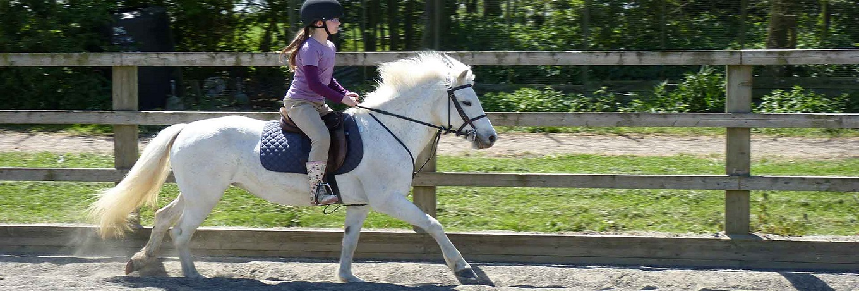 Horseriding in Ipswich