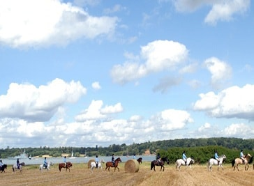 Hill Farm Equestrian Centre in Ipswich